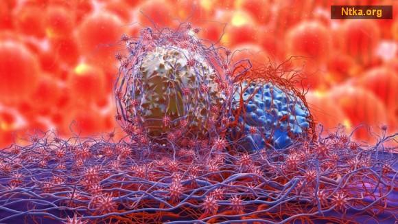 Bağışıklık sistemini güçlendirmek için yapılması gerekenler